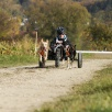 Dog-Cart Rennen Barz Open 2010