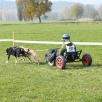 Dog-Cart Rennen Barz Open 2011