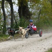 Dog-Cart Rennen Barz Zurzach 2007
