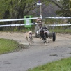 Dog-Cart-Rennen Barz Open 2009