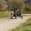 Dog-Cart mit Koda & Juca