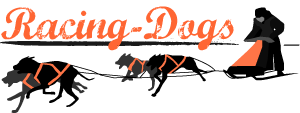 Ilka's Racing-Dogs Team